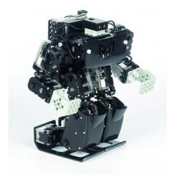 ROBOT RQ-HUNO